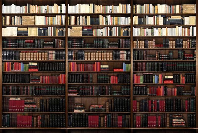 Une bibliothèque dans votre mur pour vous cultiver