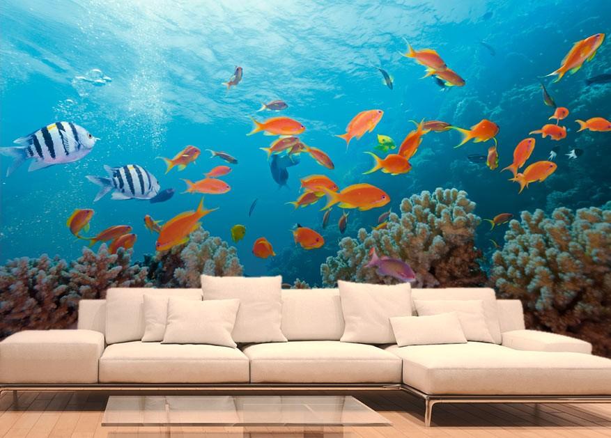 des animaux dans votre d co avec nos tableaux et papiers peints. Black Bedroom Furniture Sets. Home Design Ideas