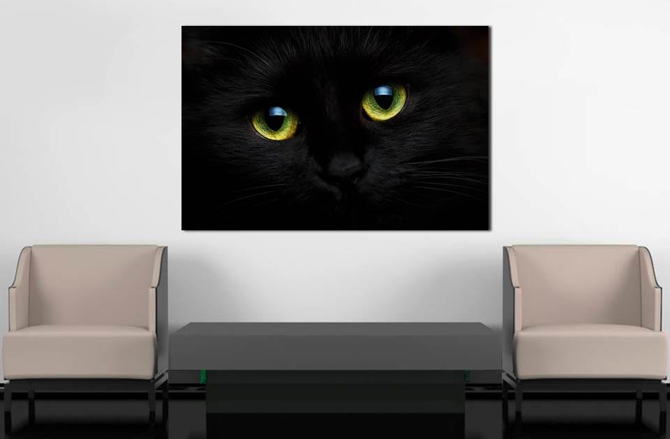 Tableau chat noir