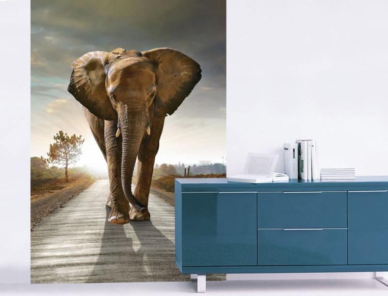éléphant dans la déco