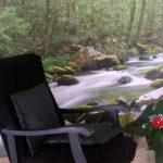 La forêt tropicale chez Carole