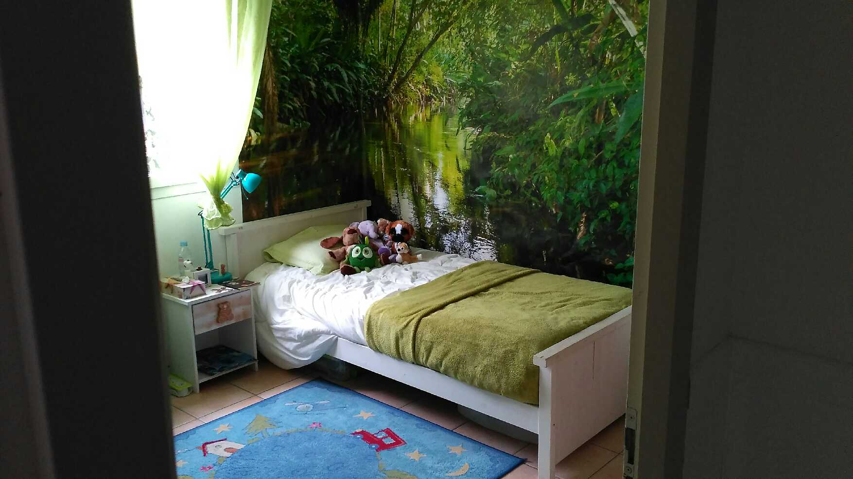 décor foret tropicale