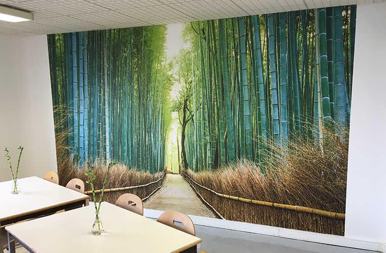 papier peint forêt de bambous