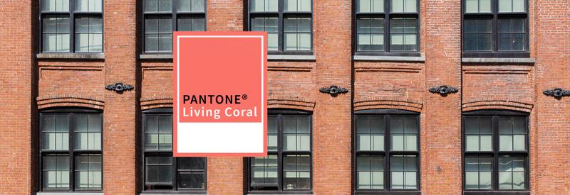 La couleur Pantone® 2019