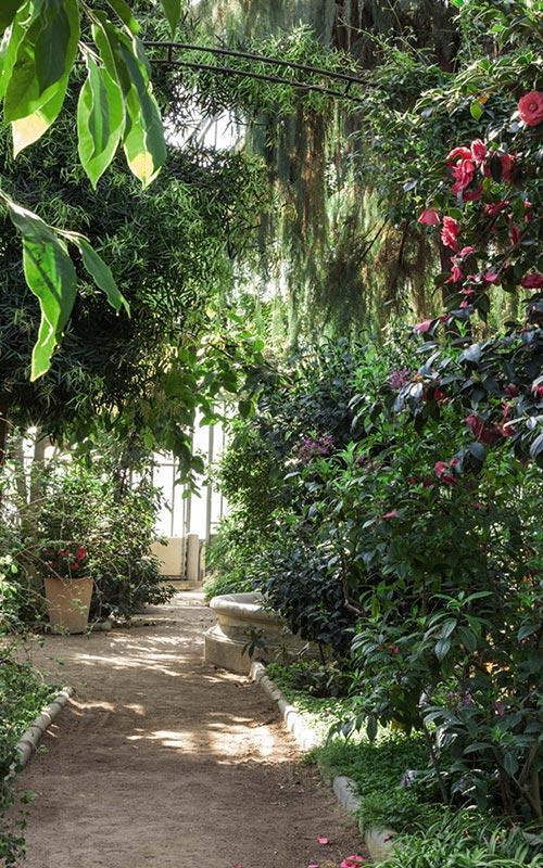 Trompe-l'oeil jardin de verdure