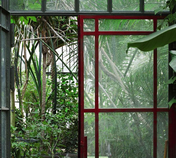 Décor serre plantation d'hiver