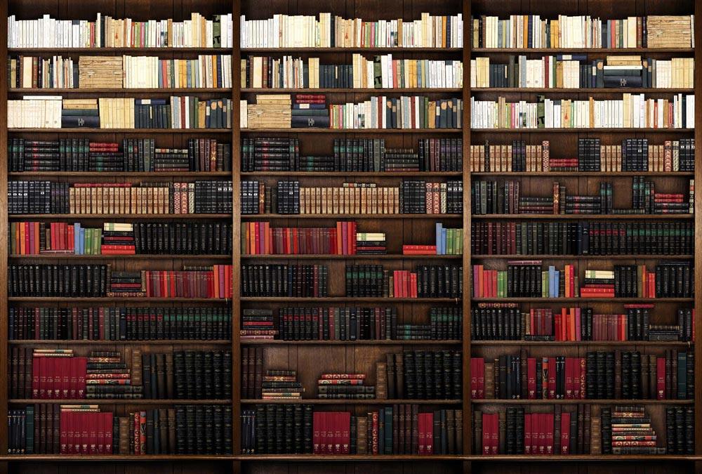 Décor panoramique trompe-l'oeil bibliothèque