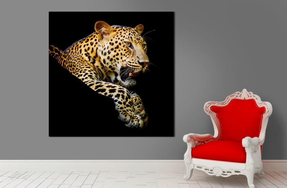 tableau animal