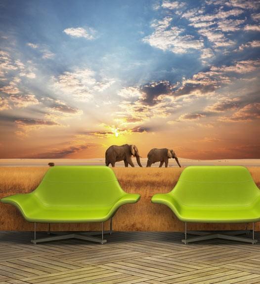 Papier peint éléphants