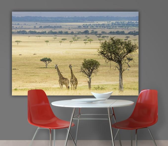 Tableau savane avec des girafes