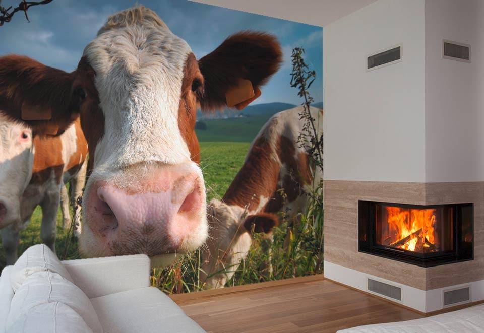 Papier peint vache