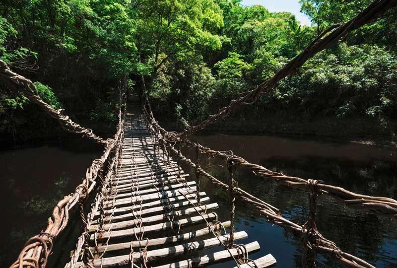Panoramique pont de singe à Bali