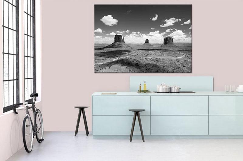 Tableau noir et blanc paysage américain