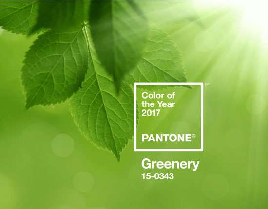 couleur greenery