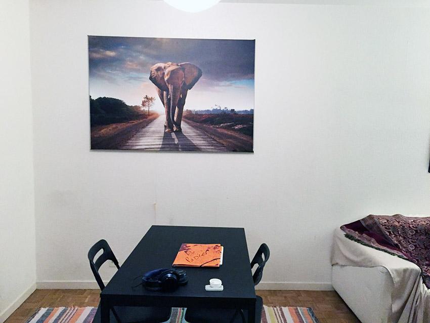 Tableau en toile éléphant