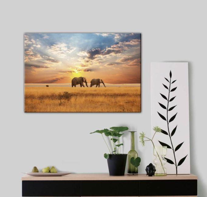 papier peint coucher de soleil éléphant